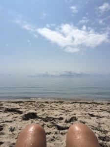Cape Cod Beach Life.  Truro, Massachusetts